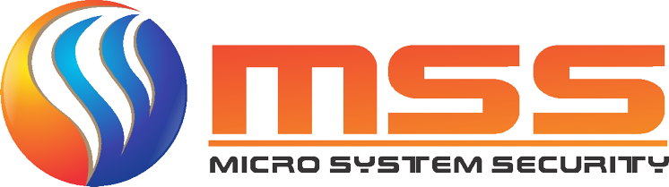 MS Security, Inc